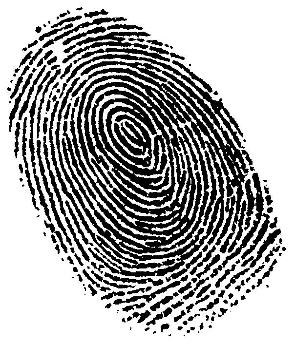 تشخیص هویت با اثر انگشت