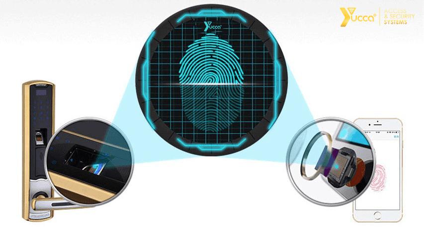 سنسور اثر انگشت قابل اعتماد قفل اثر انگشتی