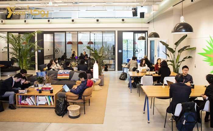 اهمیت توجه به طراحی دکوراسیون دفتر کار